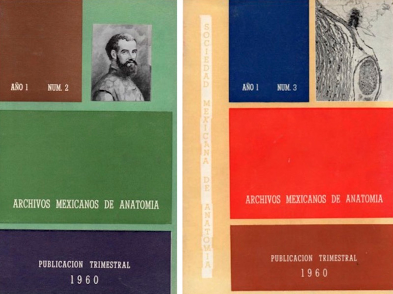 History of the Mexican Society of Anatomy